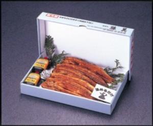 うなぎ蒲焼5本詰セット